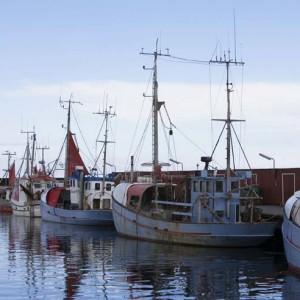 Båthavna